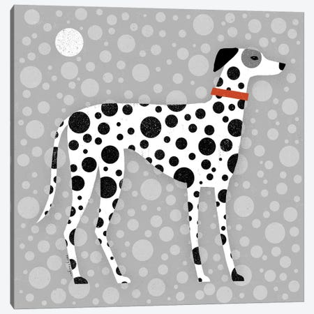 Dalmatian Canvas Print #TRU98} by Terry Runyan Art Print