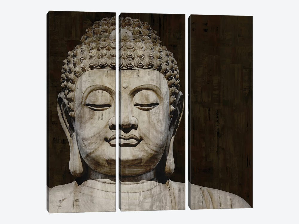 Meditative II by Tom Bray 3-piece Canvas Art Print
