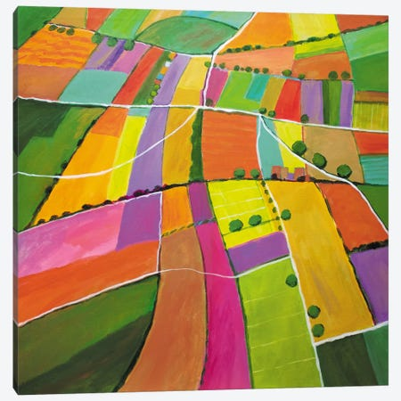 Summer Fields Canvas Print #TSD82} by Toni Silber-Delerive Canvas Wall Art