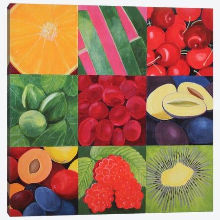 Fruit Medley Canvas Print #TSD98} by Toni Silber-Delerive Canvas Print