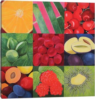 Fruit Medley Canvas Art Print