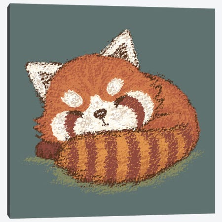 Red Panda Sleeping Canvas Print #TSG100} by Toru Sanogawa Canvas Art
