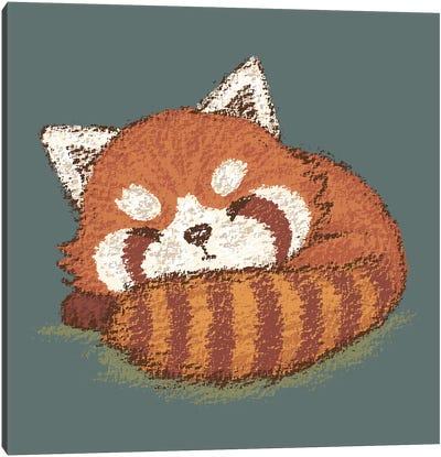 Red Panda Sleeping Canvas Art Print