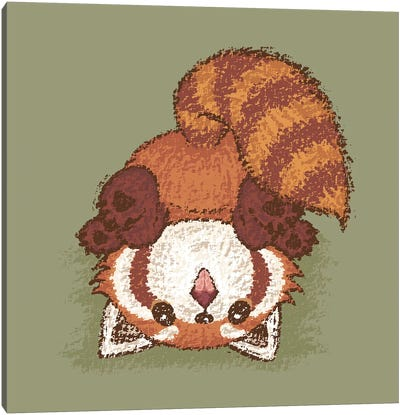 Red Panda Turn Over Canvas Art Print