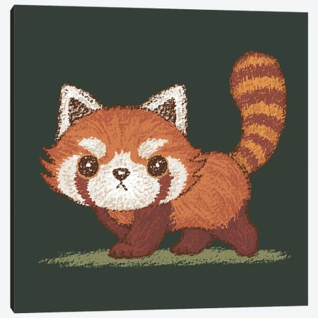 Red Panda Walking Canvas Print #TSG104} by Toru Sanogawa Art Print