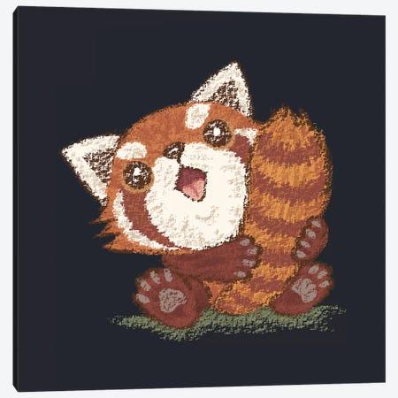 Red Panda Which Holds A Tail Canvas Print #TSG105} by Toru Sanogawa Art Print