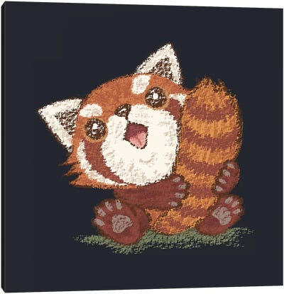 Red Panda Which Holds A Tail Canvas Art Print