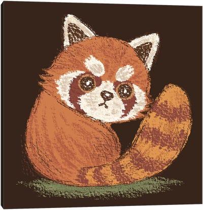 Red-Panda Look Back Canvas Art Print