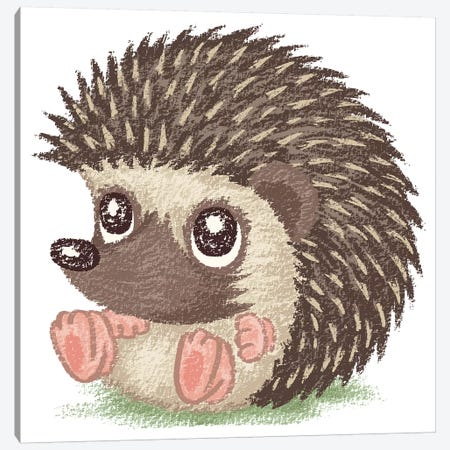 Round Hedgehog Canvas Print #TSG109} by Toru Sanogawa Canvas Wall Art