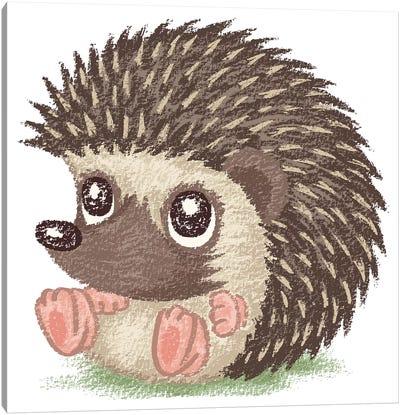 Round Hedgehog Canvas Art Print