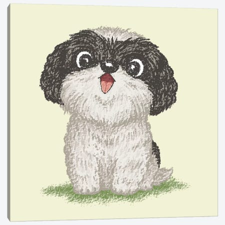 Shih Tzu Happy Canvas Print #TSG116} by Toru Sanogawa Canvas Art