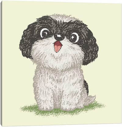 Shih Tzu Happy Canvas Art Print