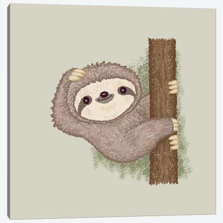 Shy Sloth Canvas Print #TSG118} by Toru Sanogawa Canvas Print