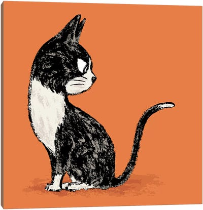 Black Cat Looking Back Canvas Art Print