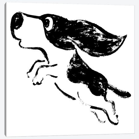 Sketch Of Dog Jump Canvas Print #TSG129} by Toru Sanogawa Canvas Art