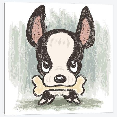 Boston Terrier And Bone Canvas Print #TSG18} by Toru Sanogawa Canvas Art