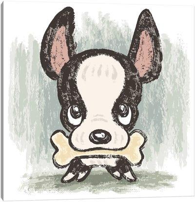 Boston Terrier And Bone Canvas Art Print