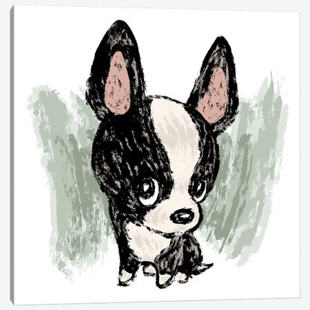 Boston Terrier Drawn By Paintbrush Canvas Print #TSG21} by Toru Sanogawa Art Print