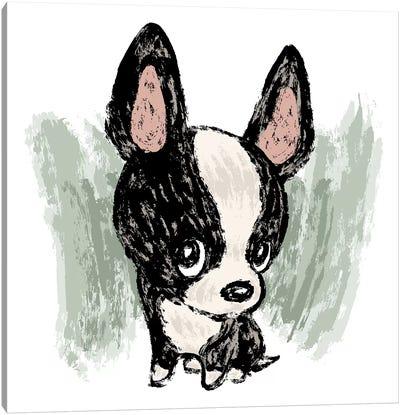 Boston Terrier Drawn By Paintbrush Canvas Art Print