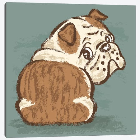 Bulldog Look Back Canvas Print #TSG23} by Toru Sanogawa Canvas Print
