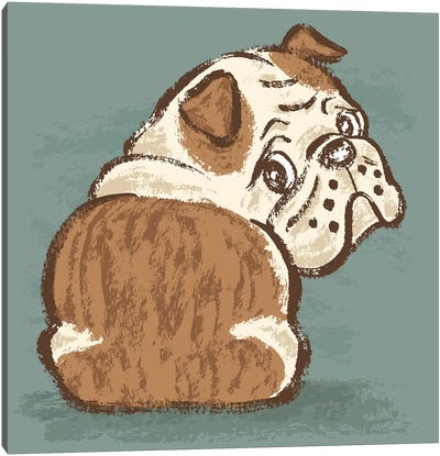 Bulldog Look Back Canvas Art Print