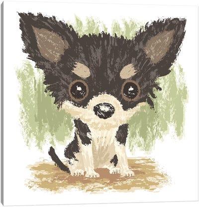 Chihuahua Is Sitting II Canvas Art Print