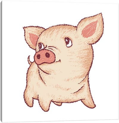 Cute Pig Looking Up Canvas Art Print