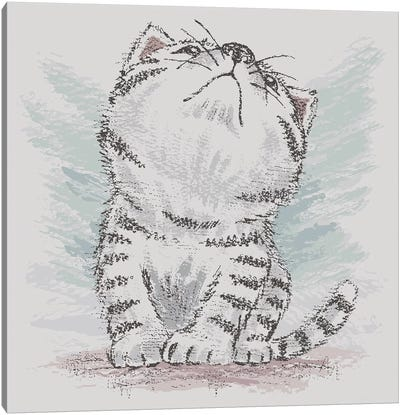 American Shorthair Which Is Looking Up At Empty Canvas Art Print