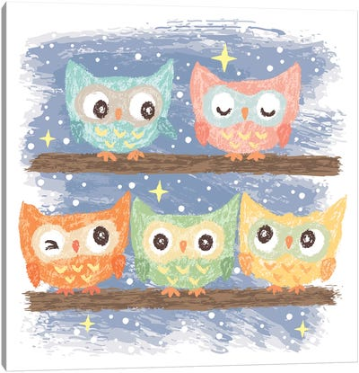 Five Birds Owl Canvas Art Print