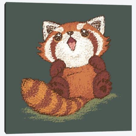 Baby Red Panda Canvas Print #TSG5} by Toru Sanogawa Canvas Art