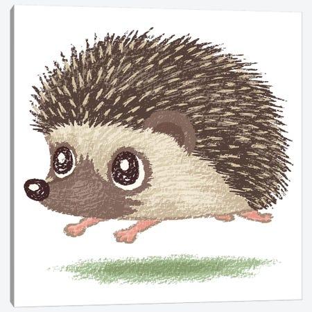 Hedgehog Running Canvas Print #TSG63} by Toru Sanogawa Art Print