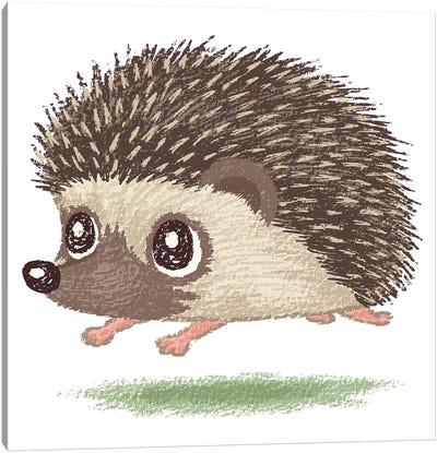 Hedgehog Running Canvas Art Print