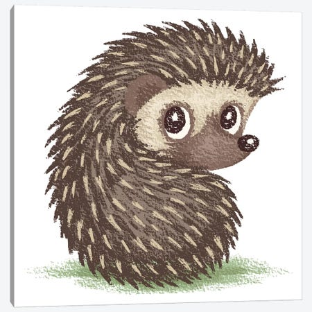 Hedgehog Which Looks At Back Canvas Print #TSG64} by Toru Sanogawa Canvas Wall Art