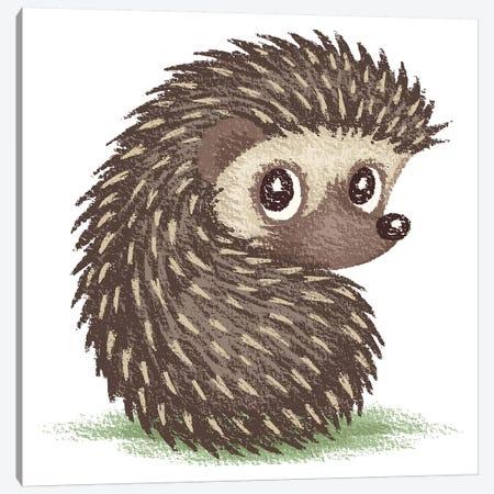 Hedgehog Which Looks At Back Canvas Print #TSG64} by Toru Sanogawa Canvas Wall Art