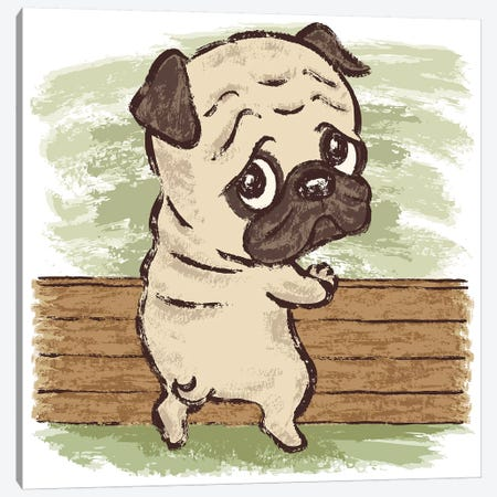 Pug Looking Back Canvas Print #TSG91} by Toru Sanogawa Canvas Art