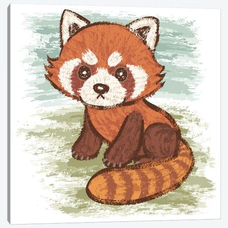 Red Panda Canvas Print #TSG96} by Toru Sanogawa Art Print