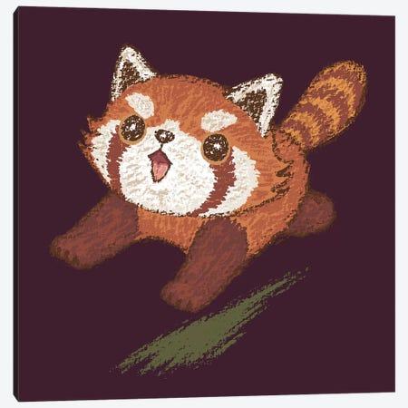 Red Panda Running Canvas Print #TSG99} by Toru Sanogawa Canvas Wall Art