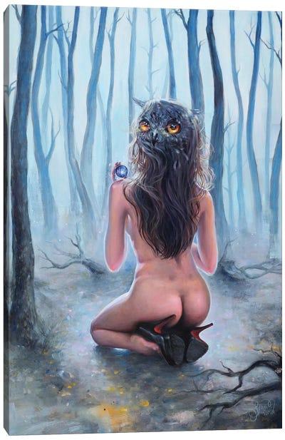 Owl Canvas Print #TSH12
