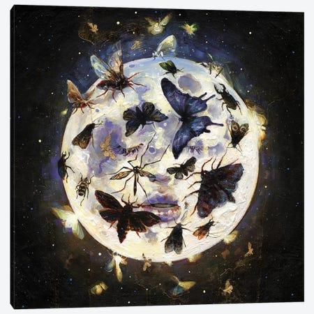 Traum Canvas Print #TSH82} by Tanya Shatseva Canvas Art