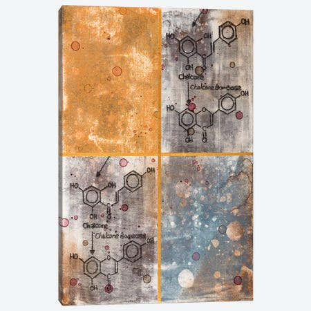 Unexpected Chemical Reaction I Canvas Print #TSM49} by Taylor Smith Canvas Art Print