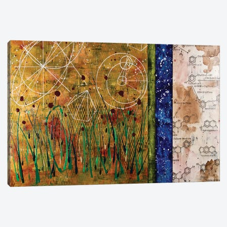Abstract Landscape II Canvas Print #TSM4} by Taylor Smith Canvas Art