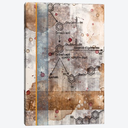 Unexpected Chemical Reaction II Canvas Print #TSM50} by Taylor Smith Canvas Wall Art