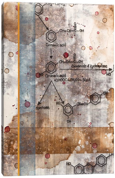 Unexpected Chemical Reaction II Canvas Art Print