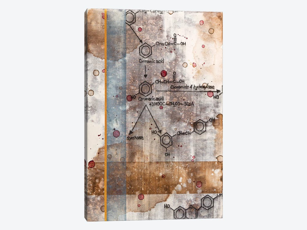 Unexpected Chemical Reaction II by Taylor Smith 1-piece Canvas Wall Art