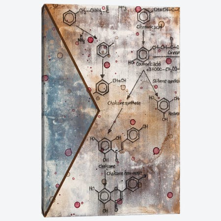 Unexpected Chemical Reaction III Canvas Print #TSM51} by Taylor Smith Canvas Art