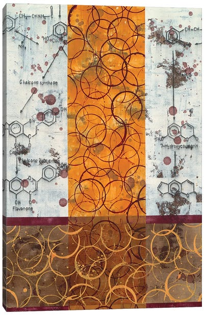 Chemical Abstract III Canvas Art Print