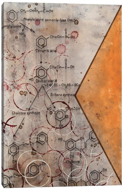 Chemical Abstract Miracle VIII Canvas Art Print