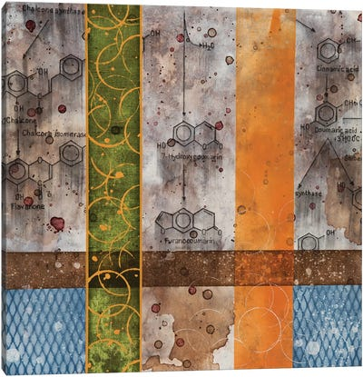 Chemical Still Life with wine & grid Canvas Art Print