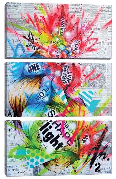 Auroral Canvas Art Print