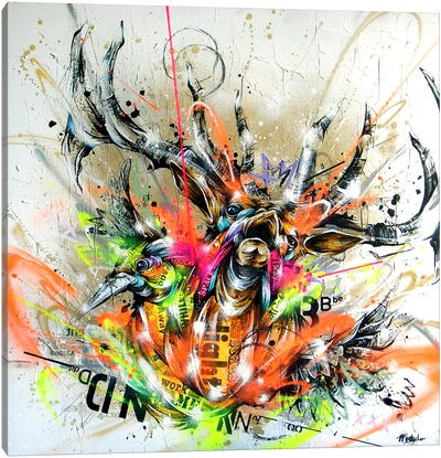 Beyond Canvas Art Print